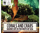 Corals and Crabs cover